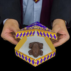 Harry Potter Chocolate Frog Mould